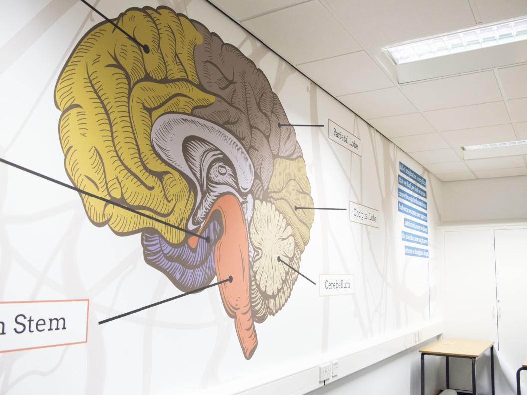 Psychology Classroom
